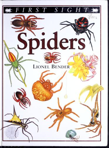 Spiders (First sight) by Lionel Bender