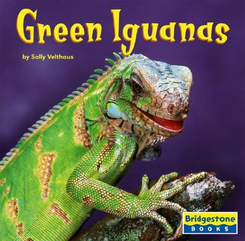 Green Iguanas (World of Reptiles) by Sally Velthaus