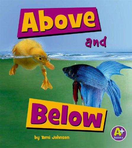 Above and Below by Tami Johnson